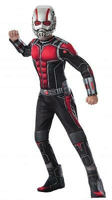 Kids Ant Costume (Marvel - Ant-Man Child Muscle)