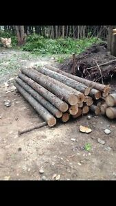 100 cedar fence post 8x6 $700 free delivery