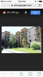 For Lease Weekly / Monthly EXCECUTIVE ADULT CONDO ...