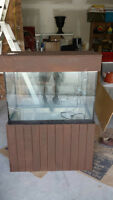 65 Gal. Fish tank with stand and cover