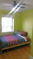 Short term room (1-2Mths) rent-St. Clair and Oakwood $620