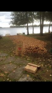 Flat Rate Leaf Blowing And Clean Up  Kawartha Lakes Peterborough Area image 3