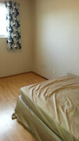 RE: Single rooms for rent in Marlborough