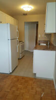 Large 1 Bedroom Central Location