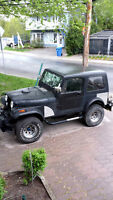 1980 Jeep CJ Coupe (2 door)