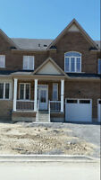 brand new 3 BR TH in Bowmanville (Durham hwy 2 & Green Rd) -July
