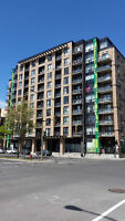 Luxurious condo Down –Town  Montreal, Empty  1week of August