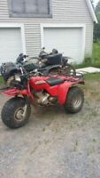 looking to buy mint shape honda 250 bigred or 250 sx $1400