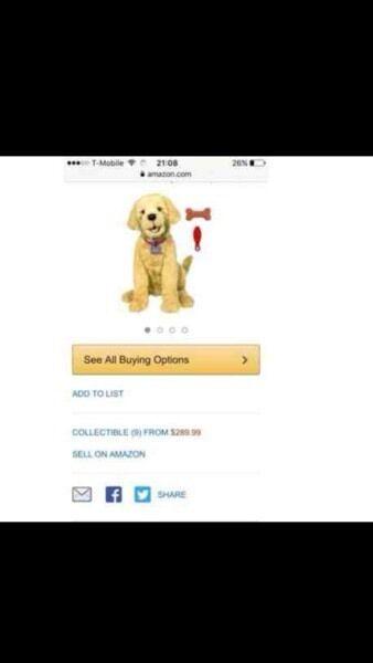 Selling a friendly dog