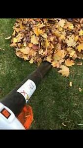 Leaf removal and landscaping best price West Island Greater Montréal image 3