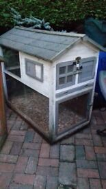House guinea pigs small rabbit