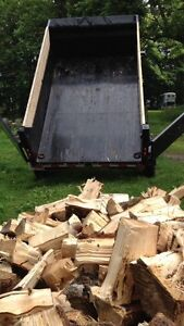 Firewood and Tree Removal Services London Ontario image 4