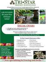 Tri-Star Lawn Care & Landscaping -