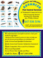 ADVANCED PEST CONTROL SERVICES, INCREDIBLE SALE PRICES EVER