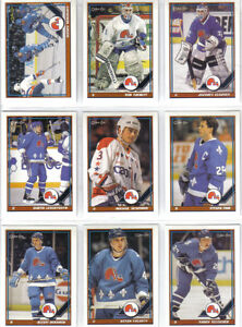 CARTES DE HOCKEY(COLLECTION DE 15 TEAMS SETS DES NORDIQUES)