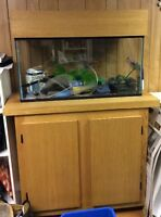 30 Gallon Aquarium With Stand