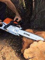 Cutting down a tree or firewood with a chainsaw,clean gutters