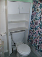 Space Saver Over The Toilet Cupboard
