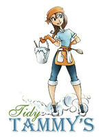 Tidy Tammy's Professional Cleaning Services