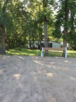 GULL LAKE, MANITOBA - LAKEFRONT COTTAGES FOR SALE