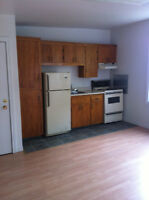 One Bedroom $550.00 close to downtown and Holland College!