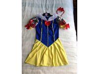 Halloween Fancy Dress Snow White Costume