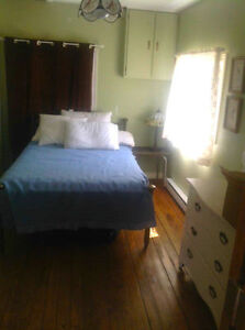 Quaint renovated cottage in Ompah, close to Palmerston lake Kingston Kingston Area image 4