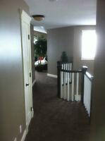 Interior/Exterior Residential Painter