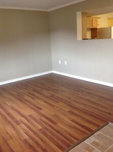 1 BDRM Basement Suite Available mid. February