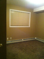 Looking for a female roommate in Mckenzie Towne from April 1st