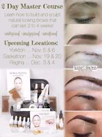 2 Day Sleek Brows Master Course