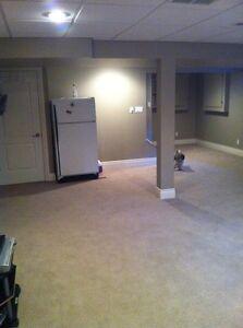 Large open concept basement suite for rent