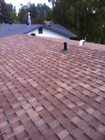 Re-Roof Specialist (Cheap Rates!)