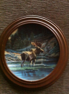 Wildlife collector plates Strathcona County Edmonton Area image 3