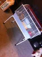 Rabbit and Cage For sale!