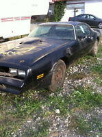 1977 Trans Am SE - RARE - #'s matching project