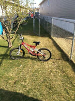 20'' CCM Mountain Bike For Sale, 10 speed
