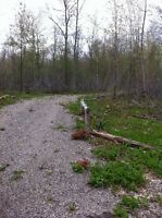 12 Acre Treed lot zoned for building