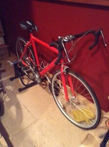 21 speed road bike and trainer