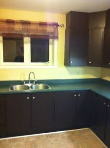 2Bedroom Apartment located 5 Minutes Walk from the Avalon Mall