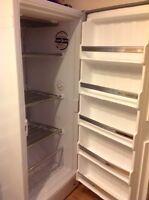 Eaton Viking Stand Up Freezer