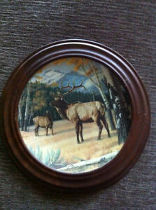 Wildlife collector plates Strathcona County Edmonton Area image 6