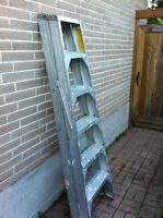 Featherlite 8ft 2 sided ladder