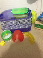 cage+accessories-perfect for dwarf hamster,mouse or gerbil