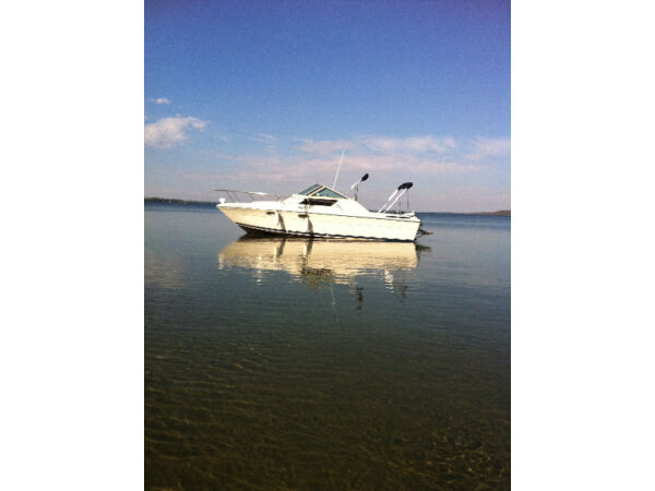 Used 1984 Other Slickcraft Tiara 2600 Continental