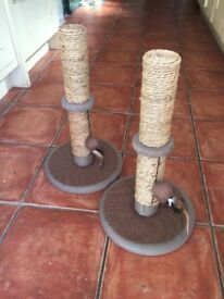 Cat / kitten Scratch Post x 1