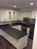 Brand New 2 bed 2 baths near Whyte Ave