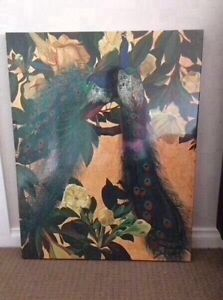 Peacocks Stretched Canvas. New. Still wrapped in plastic Mornington Clarence Area Preview