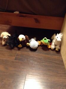 Stuffed animals! $5 (each) Peterborough Peterborough Area image 2