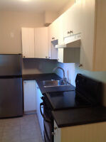 Bright 1 bedroom suite for rent